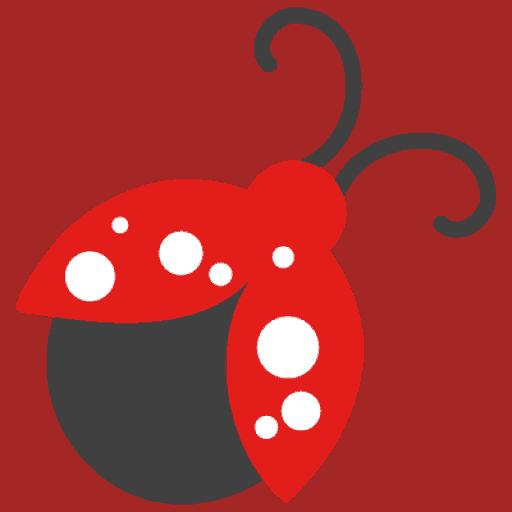 NBCF ladybug